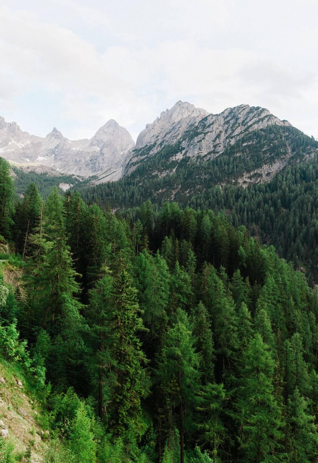 Page 164 of East Tyrol