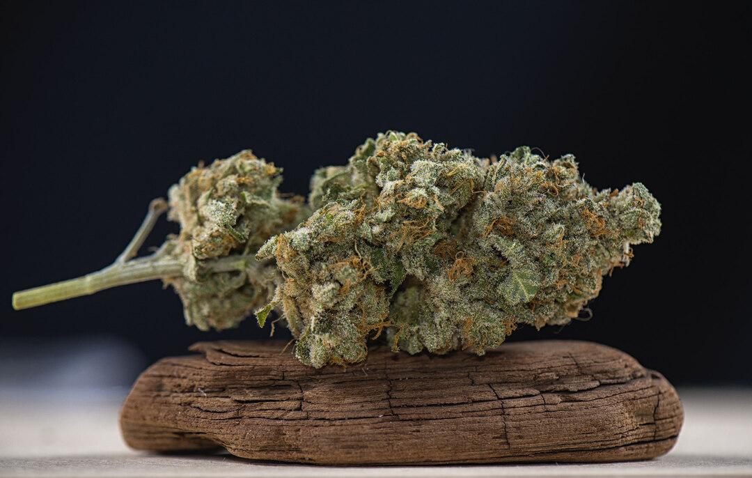 Page 14 of Cannabis Medizin zwischen Legalisierung und Verbot