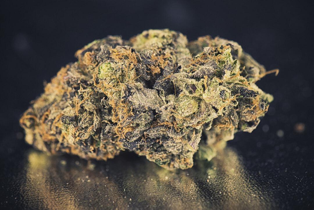 Page 74 of Cannabis gegen die GKV