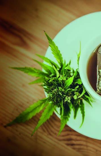Page 58 of Strafbarkeit von Cannabisprodukten in Deutschland und Österreich