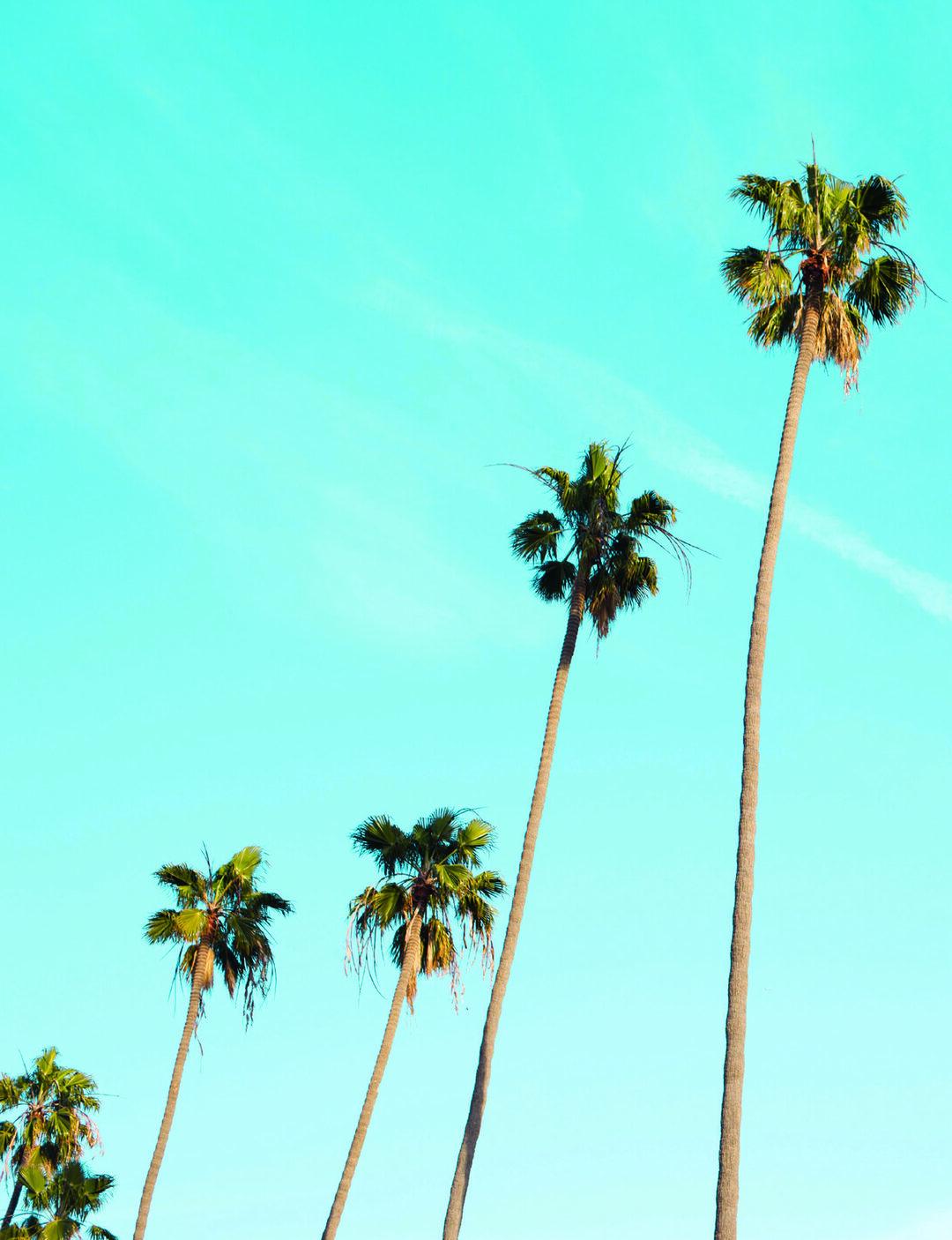 Read story: West Coast, Best Coast