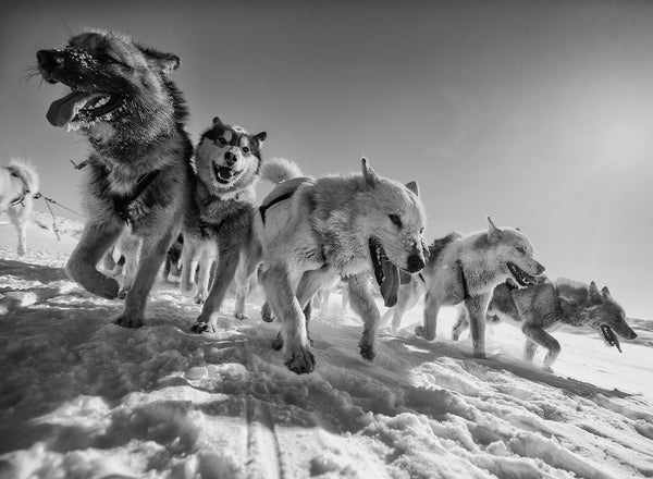 story from: Polarfronten 1_2018