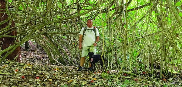 Read story: Safe Hiking With Your Dog