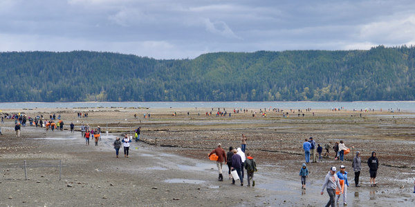 Page 20 of Harvesting Shellfish on Public Beaches
