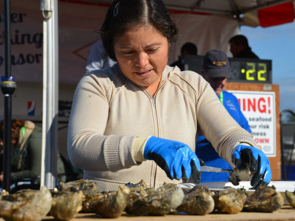 Page 8 of West Coast Oyster Shucking Competition