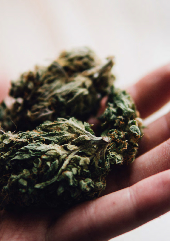 Page 16 of Die Analytik von Cannabisprodukten