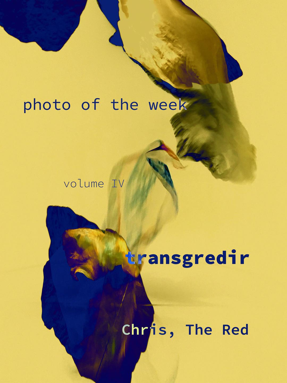 Page 1 of Photo of the Week - volume IV - Transgredir