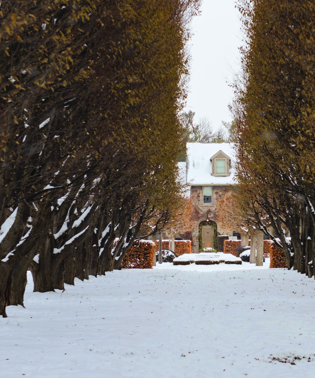Page 28 of Romantic Winter Photoshoot Spots in Niagara