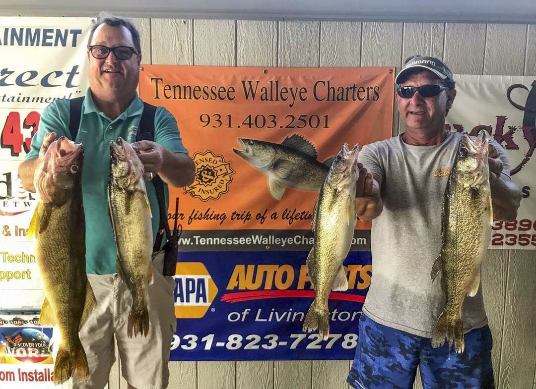 Page 36 of Tennessee Walleye Charters Dale Hollow Lake