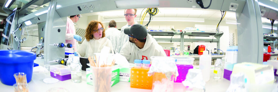 Page 15 of Undergrads, using state-of-the-art research tools, are learning key research skills while making discoveries.