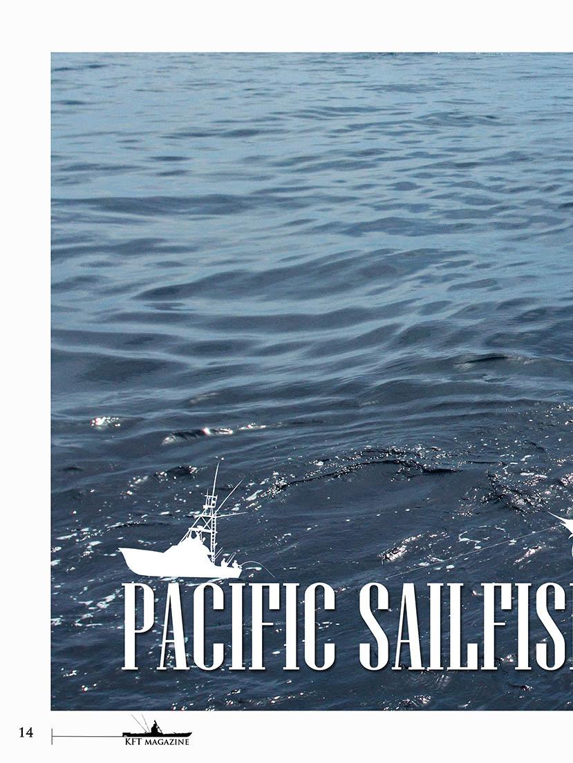 Page 14 of PACIFIC SAILFISH