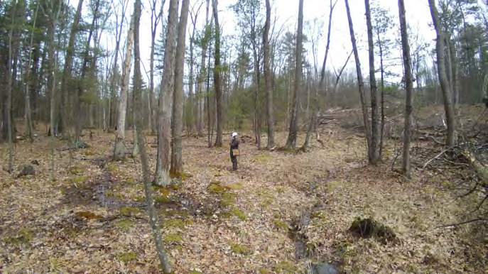 Page 50 of Inaccurate Cover Classification Leads to Unecessary Loss of Pennsylvania Palustrine Wetland Forest Structure and Functions