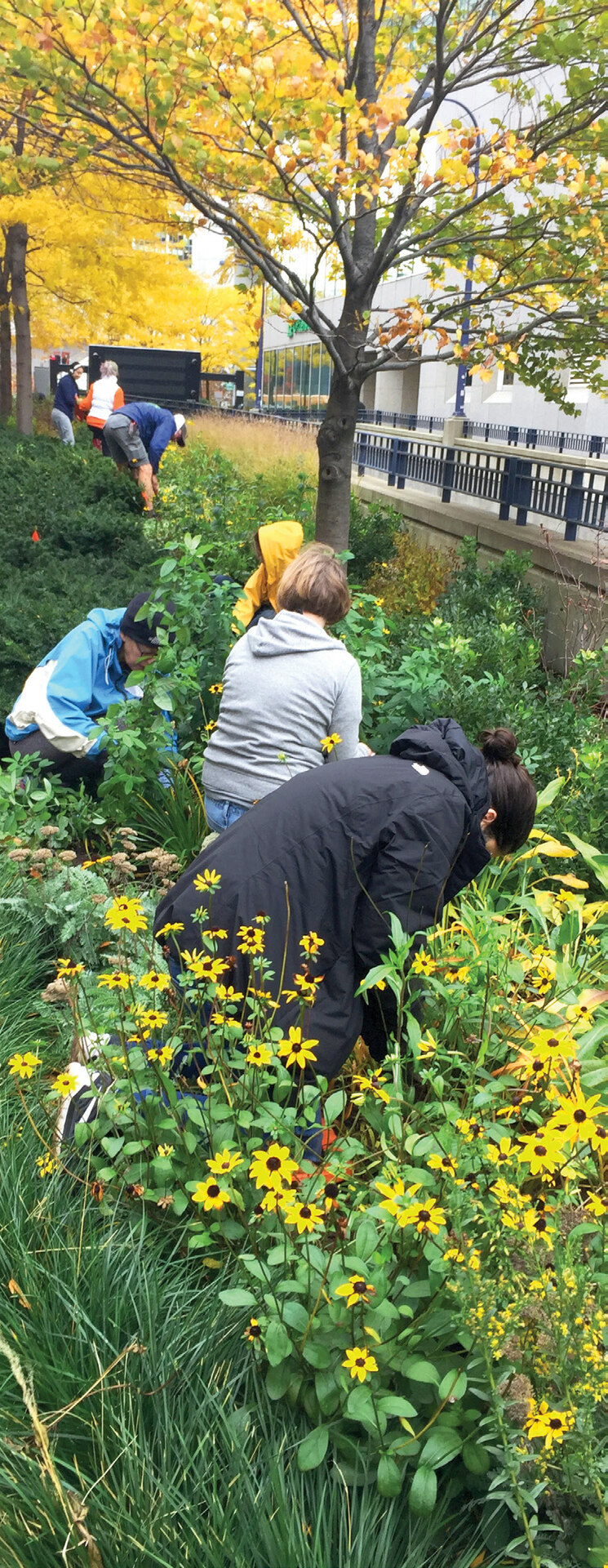 Page 20 of ASSESSING PARK CONSERVANCY VOLUNTEER PROGRAMS: BEST PRACTICES