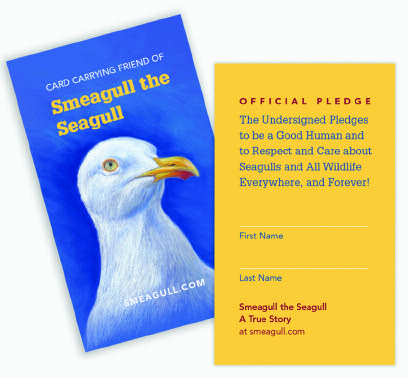 Smeagull the Seagull A Love Story on the Wing - Issuu