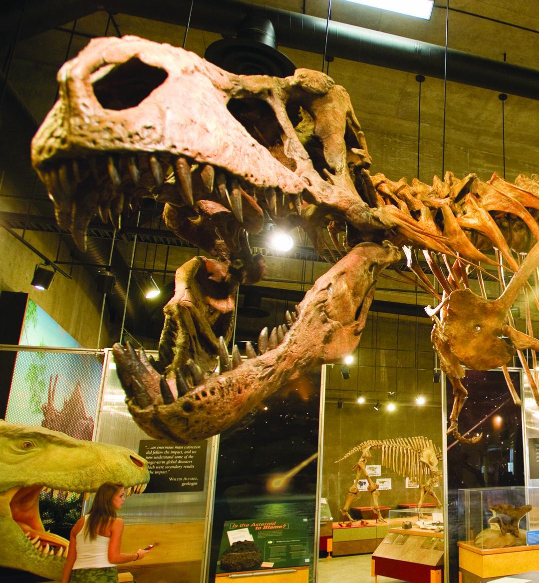 Page 12 of Experience Saskatchewan's Dinosaur Trails