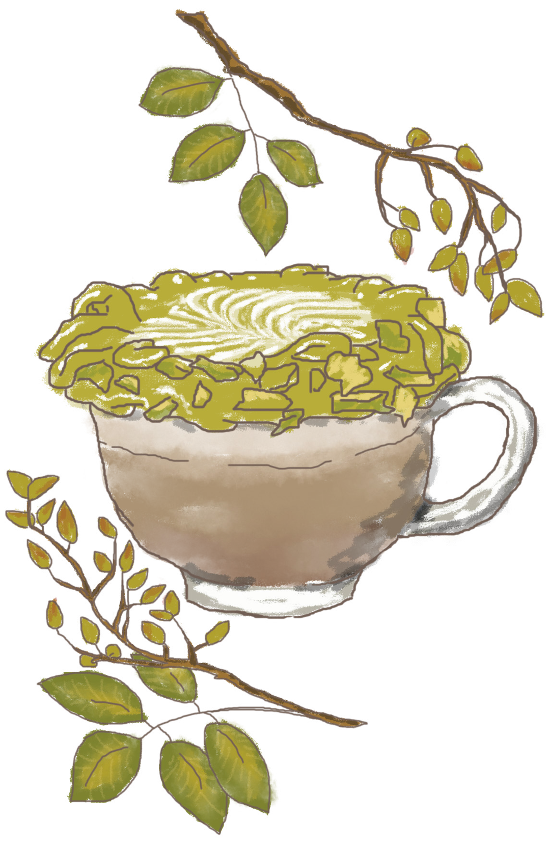 Page 12 of Drink of the Month: Pistacchiello Coffee