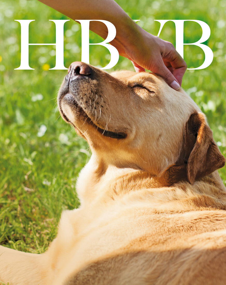 Page 1 of HBVB Magazine nummer 23 apr 2019