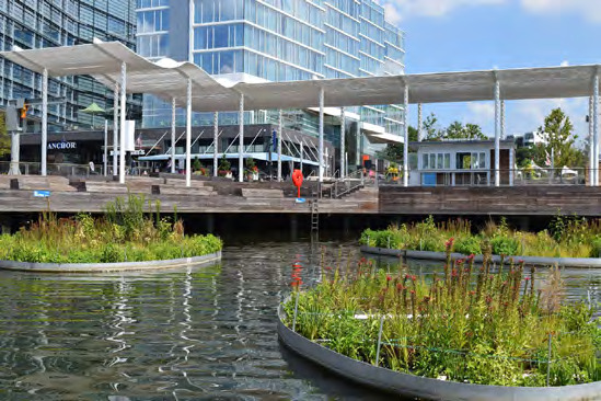 Page 38 of Adapting floating wetland design to advance performance in urban waterfronts