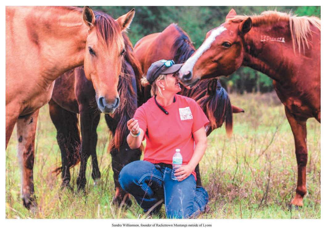 Page 10 of Wild Horses Find Refuge with 3 Georgia Women