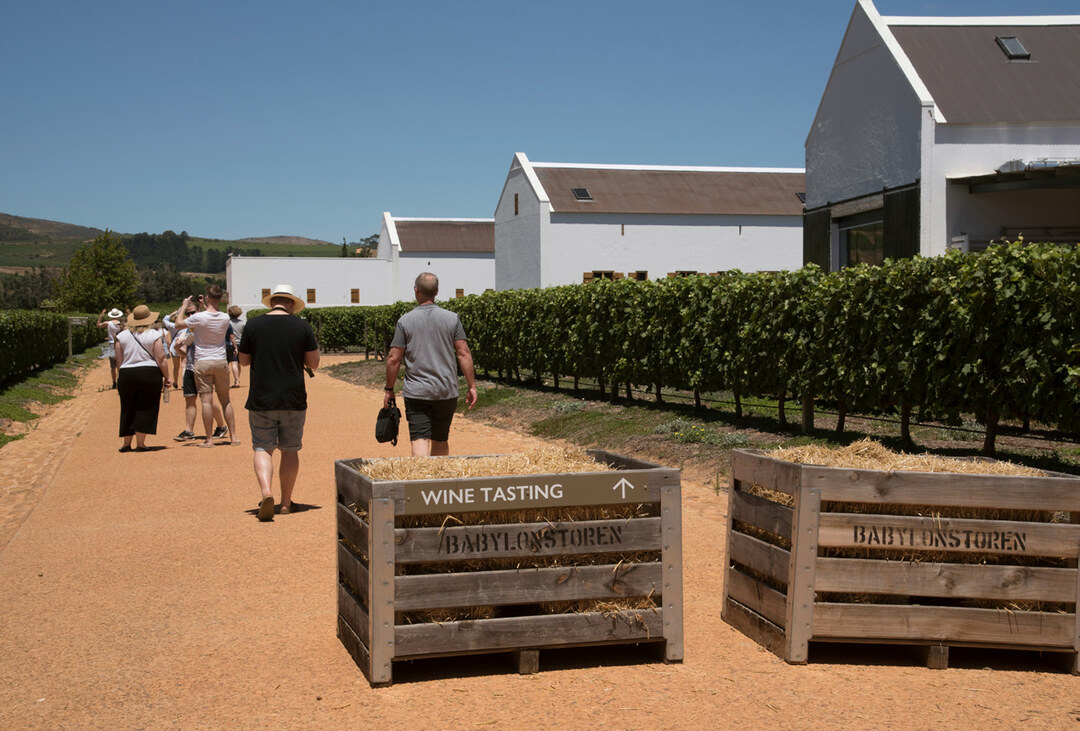 Page 24 of Eat, drink and sleep the winelands!