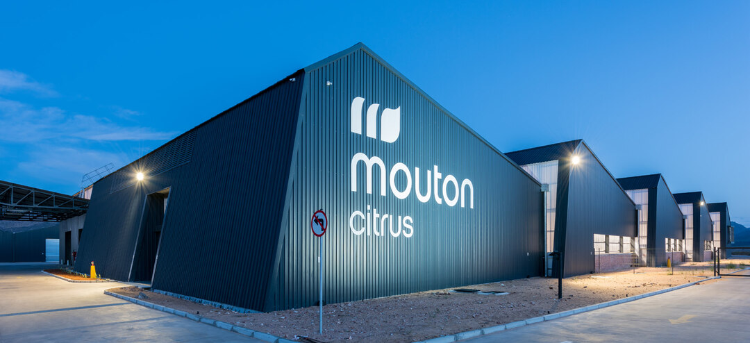 Page 56 of Mouton Citrus packing facility