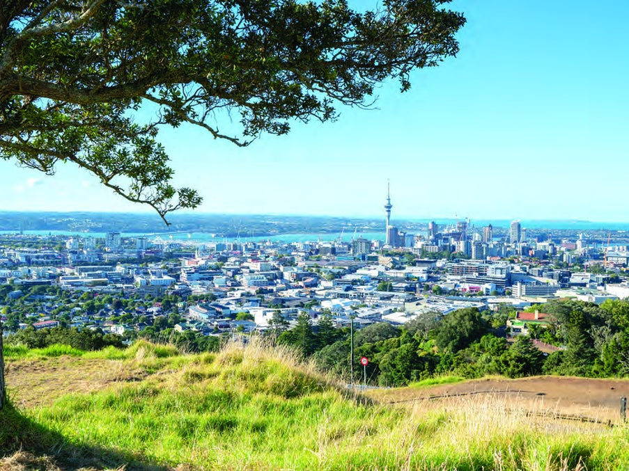 Page 24 of Walking in Auckland