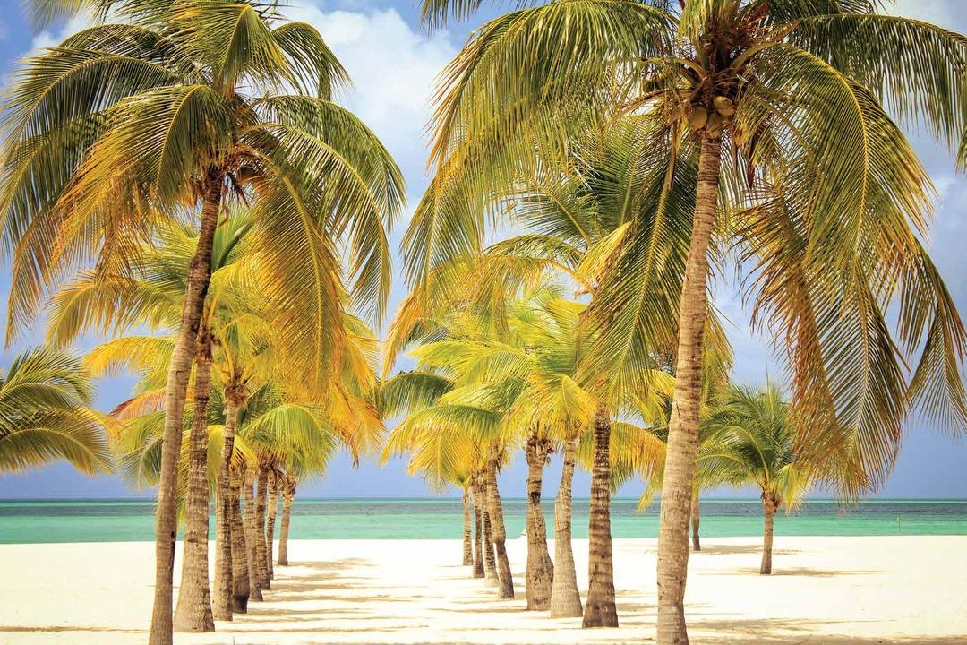 Page 1 of Las mejores playas de México