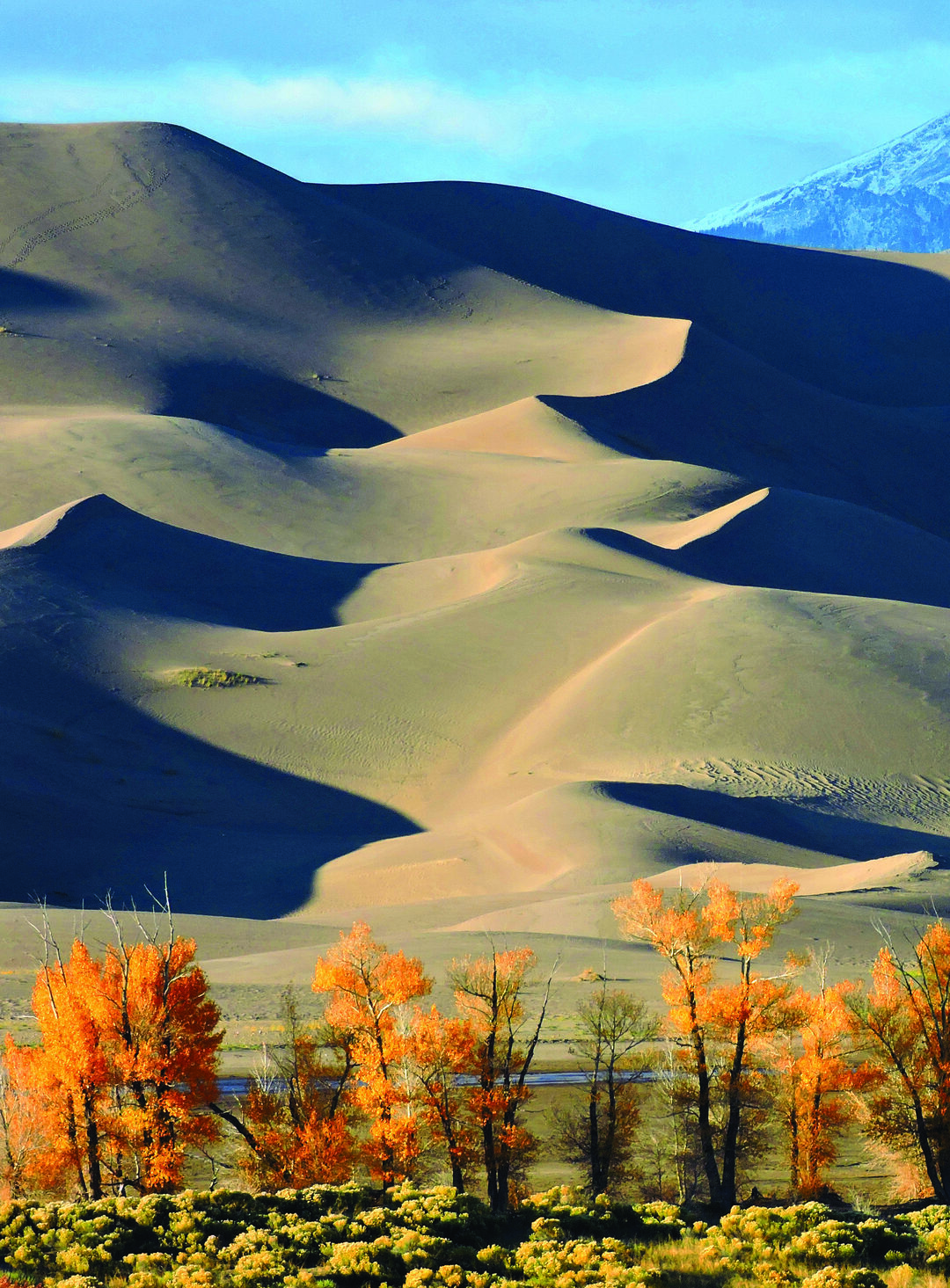 Page 34 of Autumn Among the Dunes