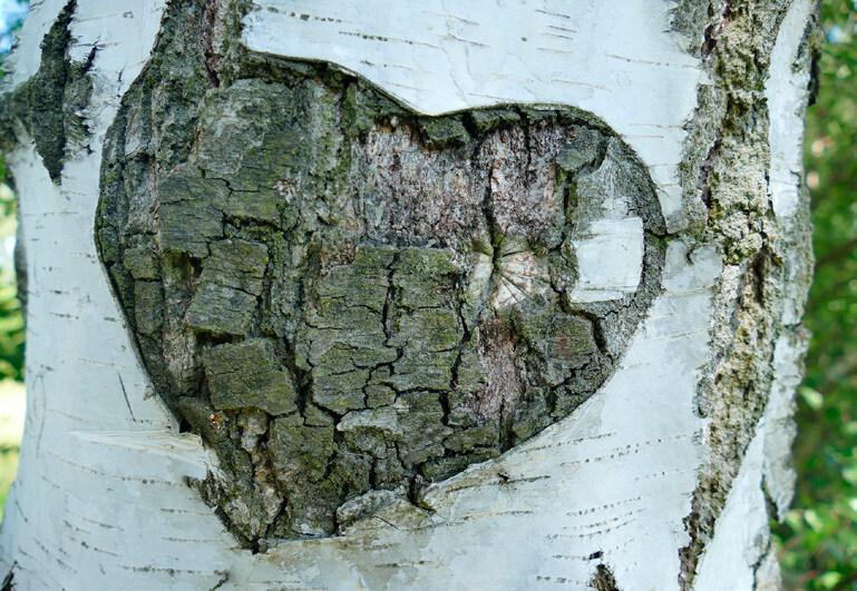 Page 18 of Erkki Lähde – Ystävällä koivulla sydän ja sielu