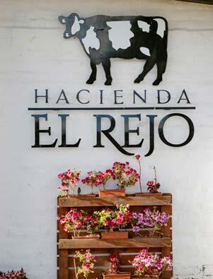 Page 50 of Experiencia Hacienda El Rejo