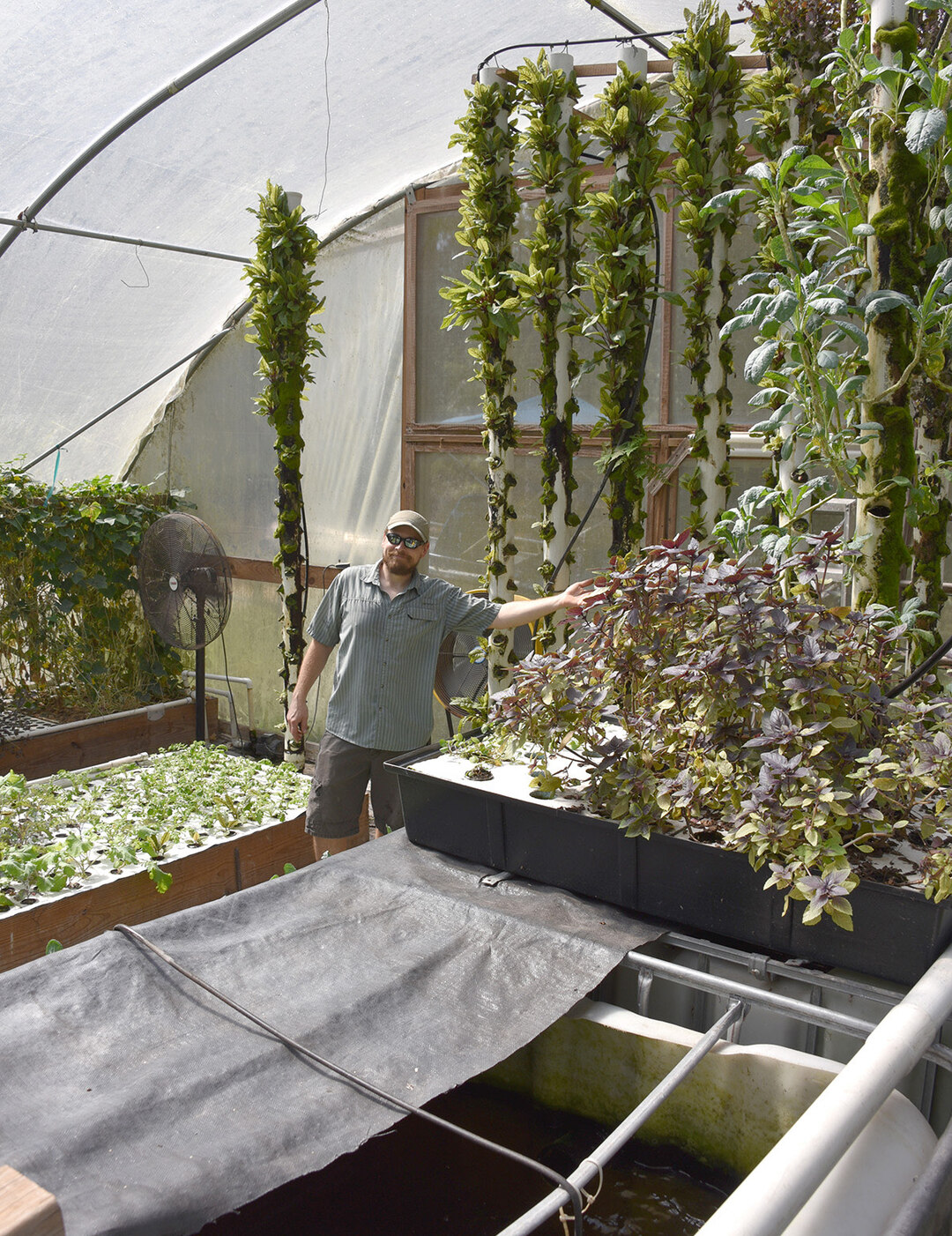 Page 38 of Small Farm Spotlight: the basics of aquaponics with Billy's Botanicals