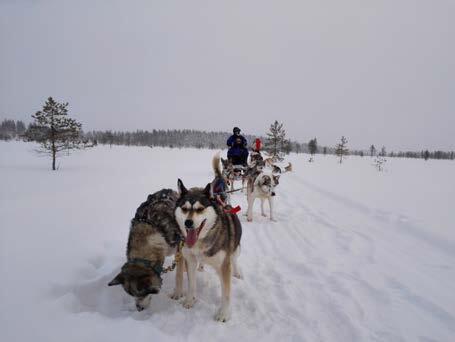 Page 34 of Wat ik nooit dacht te doen (en toch deed) in Fins Lapland