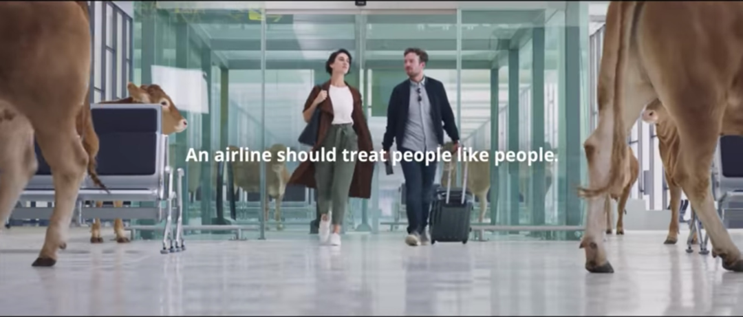 Page 8 of Our cover story - WestJet's new ad campaign