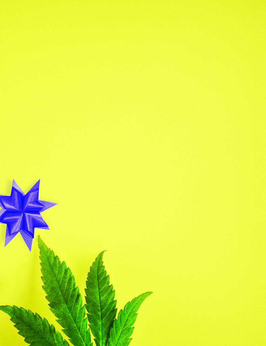 Page 12 of 4 Ways CBD Can Enhance Your Holiday Festivities