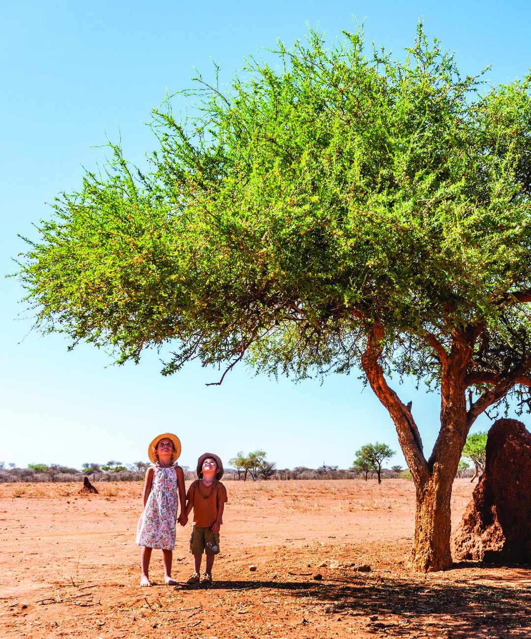 Page 34 of The World is Big when you are Small - The most memorable experiences in Namibia