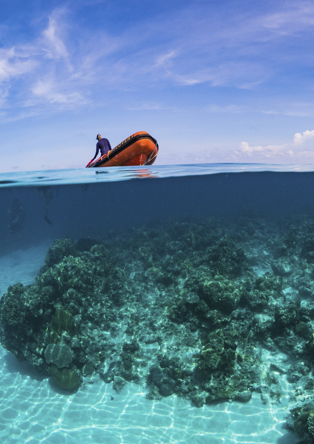 Page 96 of THE TUBBATAHA REEFS – THE PHILIPPINES' UNESCO JEWELS