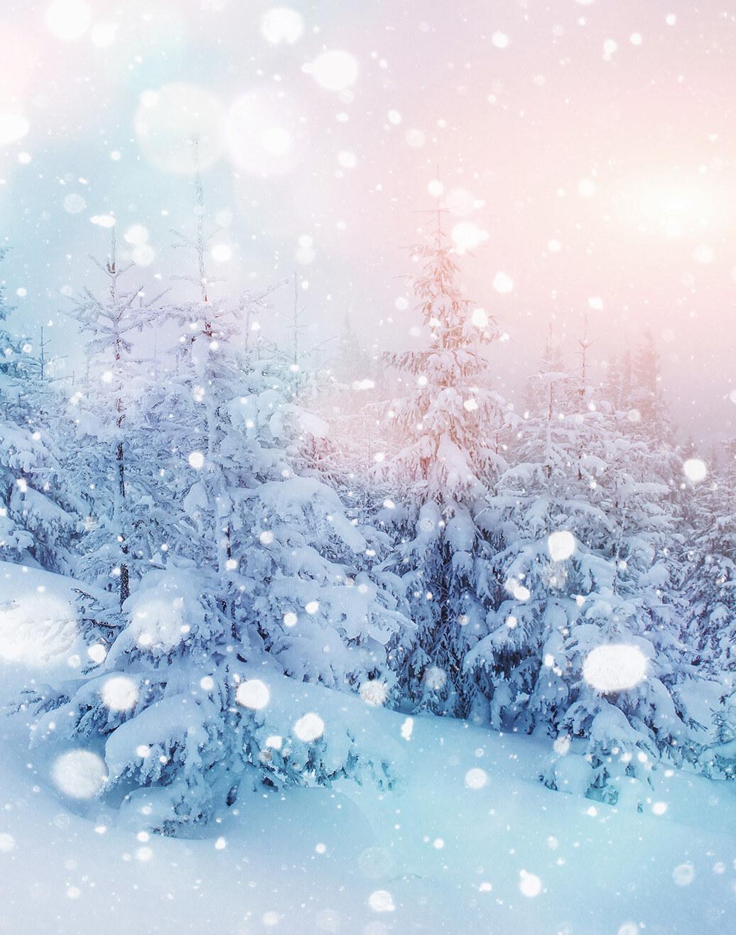 story from: Winter 2020 Essential Wellness Magazine