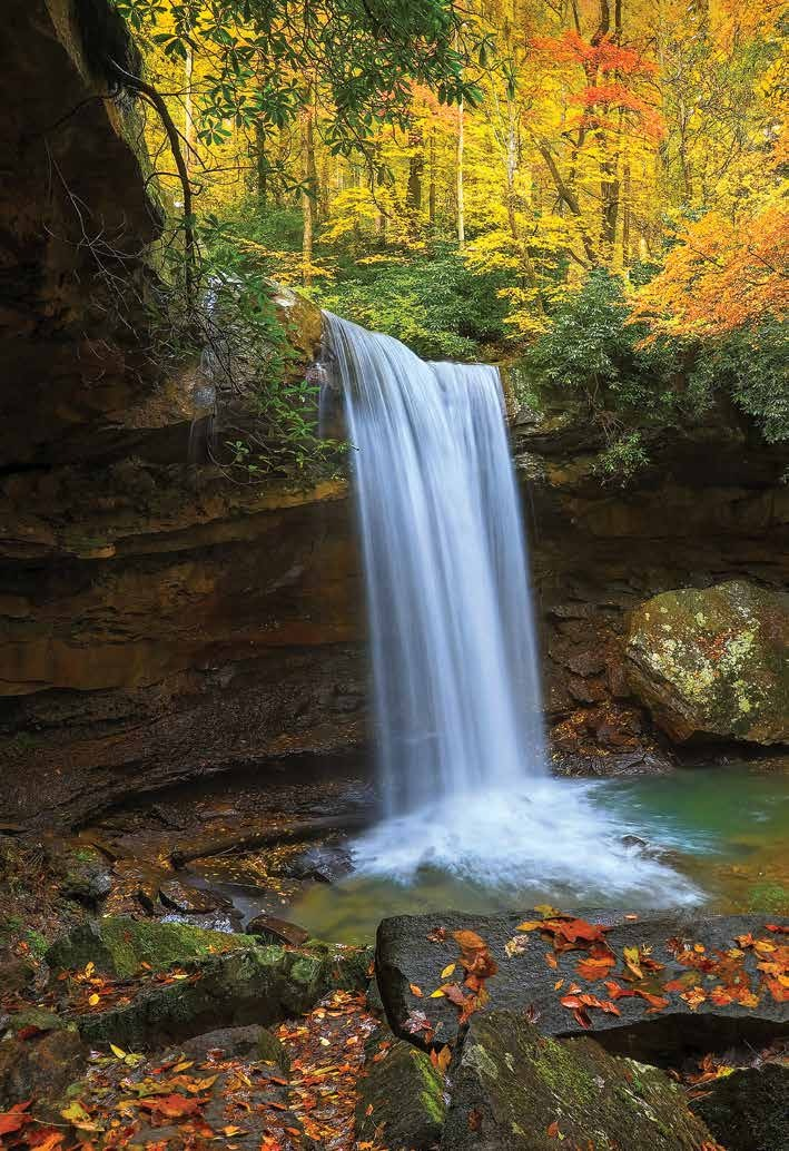 Page 8 of Fall Brings Color to the Laurel Highlands