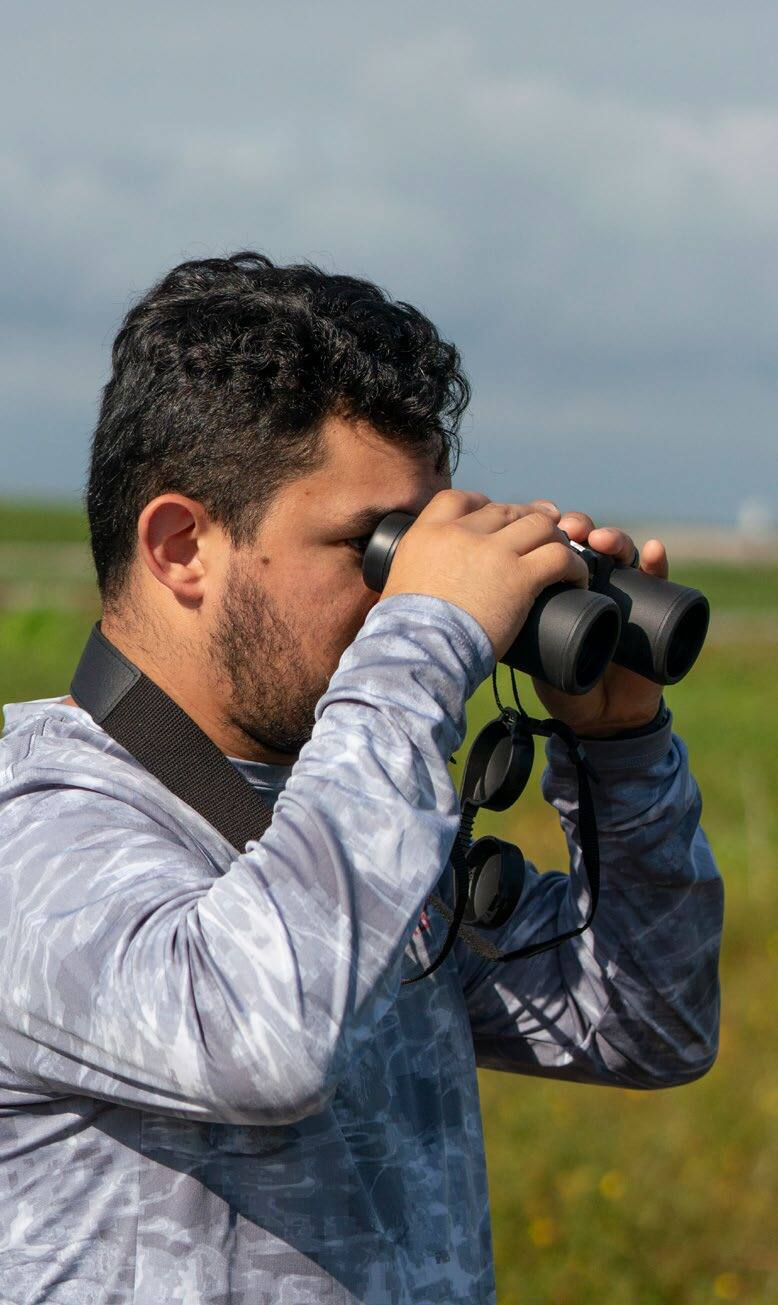 Page 8 of How Technology is Transforming Birding