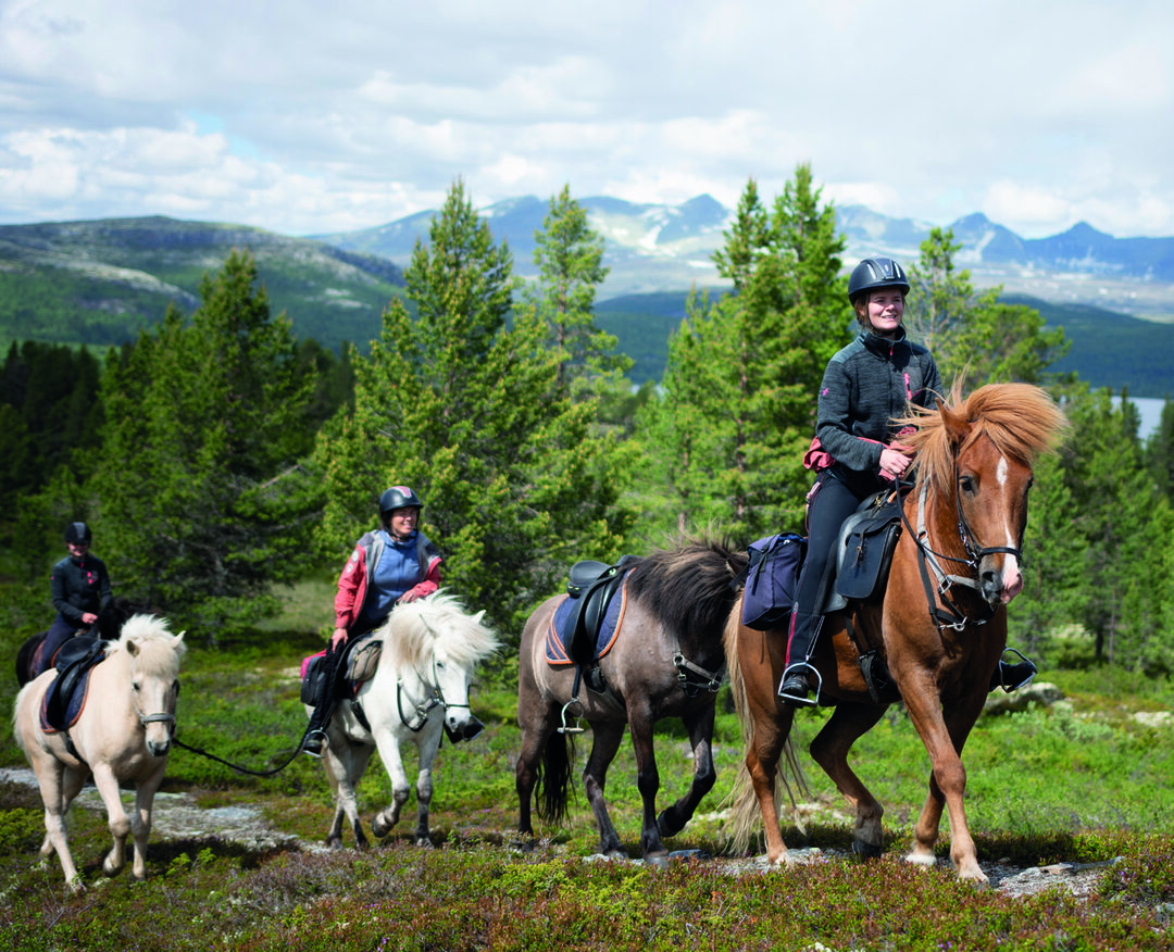 Page 20 of Your guide to Gudbrandsdalen - Official travel guide 2020
