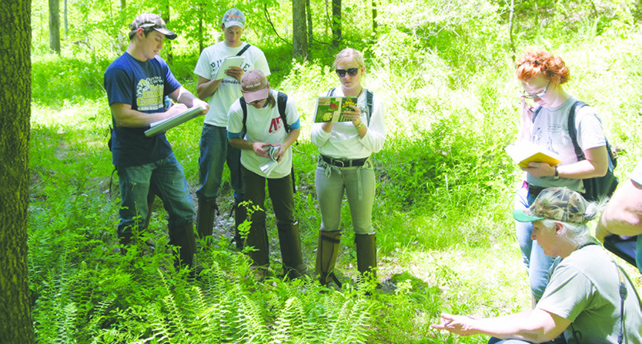Page 48 of FIELD NOTES: Forest Stewards