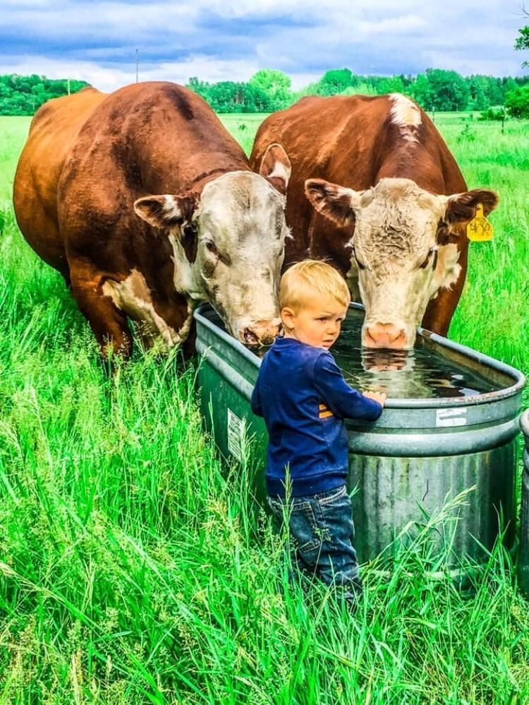 Page 1 of DaKitch Farms 2020 Bull & Female Sale Catalog