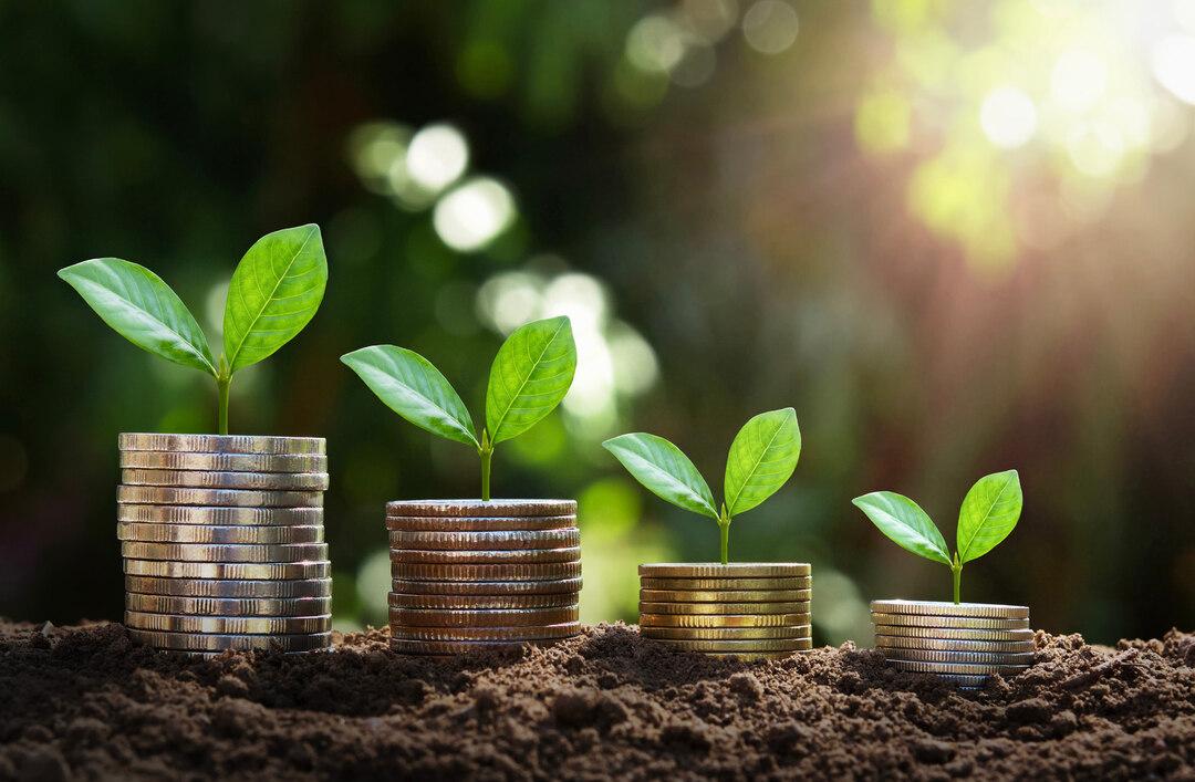 Page 14 of Lönsamt med hållbara investeringar