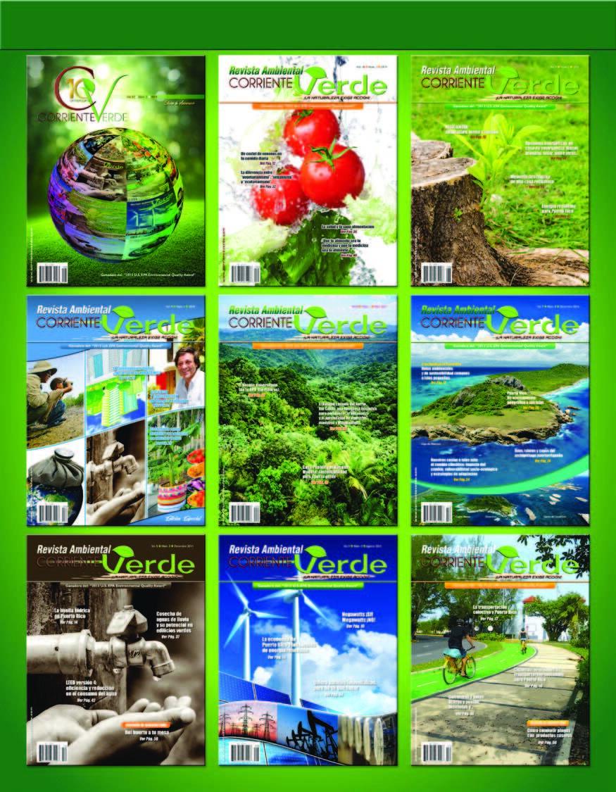 Page 64 of Revista Ambiental