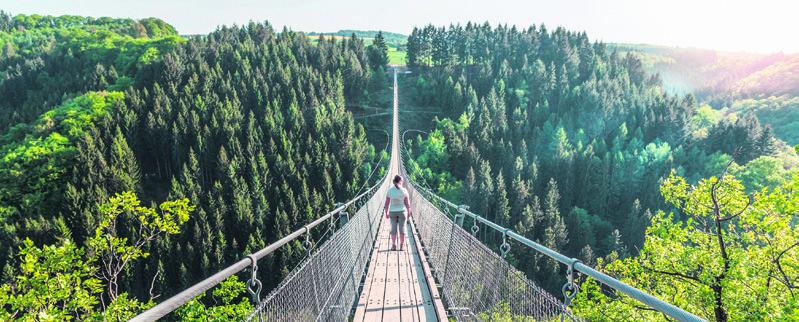 Page 19 of Geierlay, Germany's longest suspension bridge