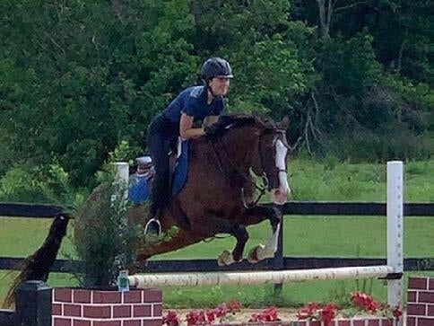 Page 14 of Wellness and Mindfulness Benefits of Riding Horses