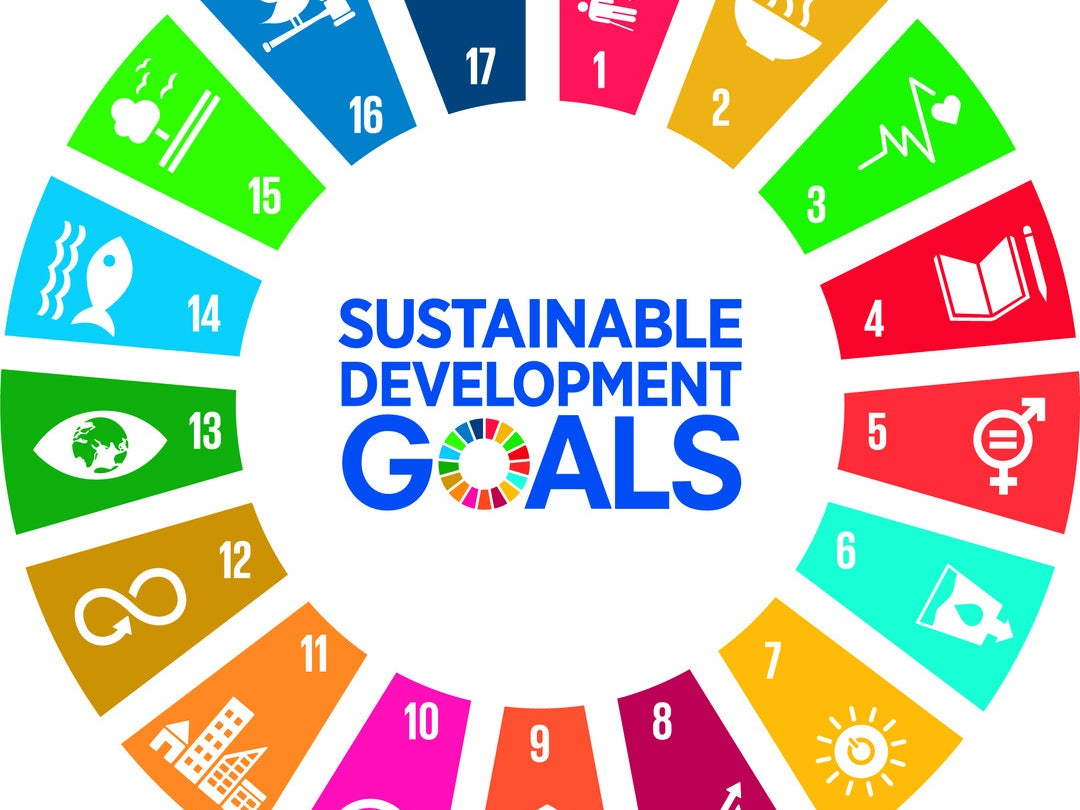 Page 44 of UNDP and the SDGs
