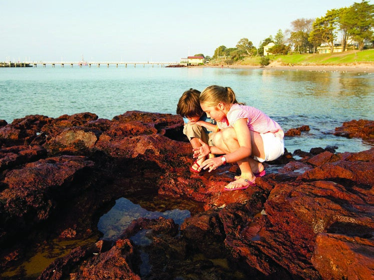 Page 46 of Family Day Trips from Melbourne