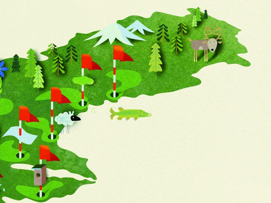 Page 38 of Golfsverige gör skillnad för miljön!