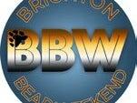 Page 9 of Brighton Bear merch for Brighton `Rainbow Fund